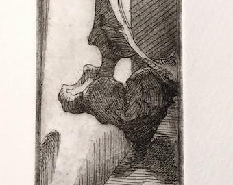 Vertebrae Study- Intaglio Print