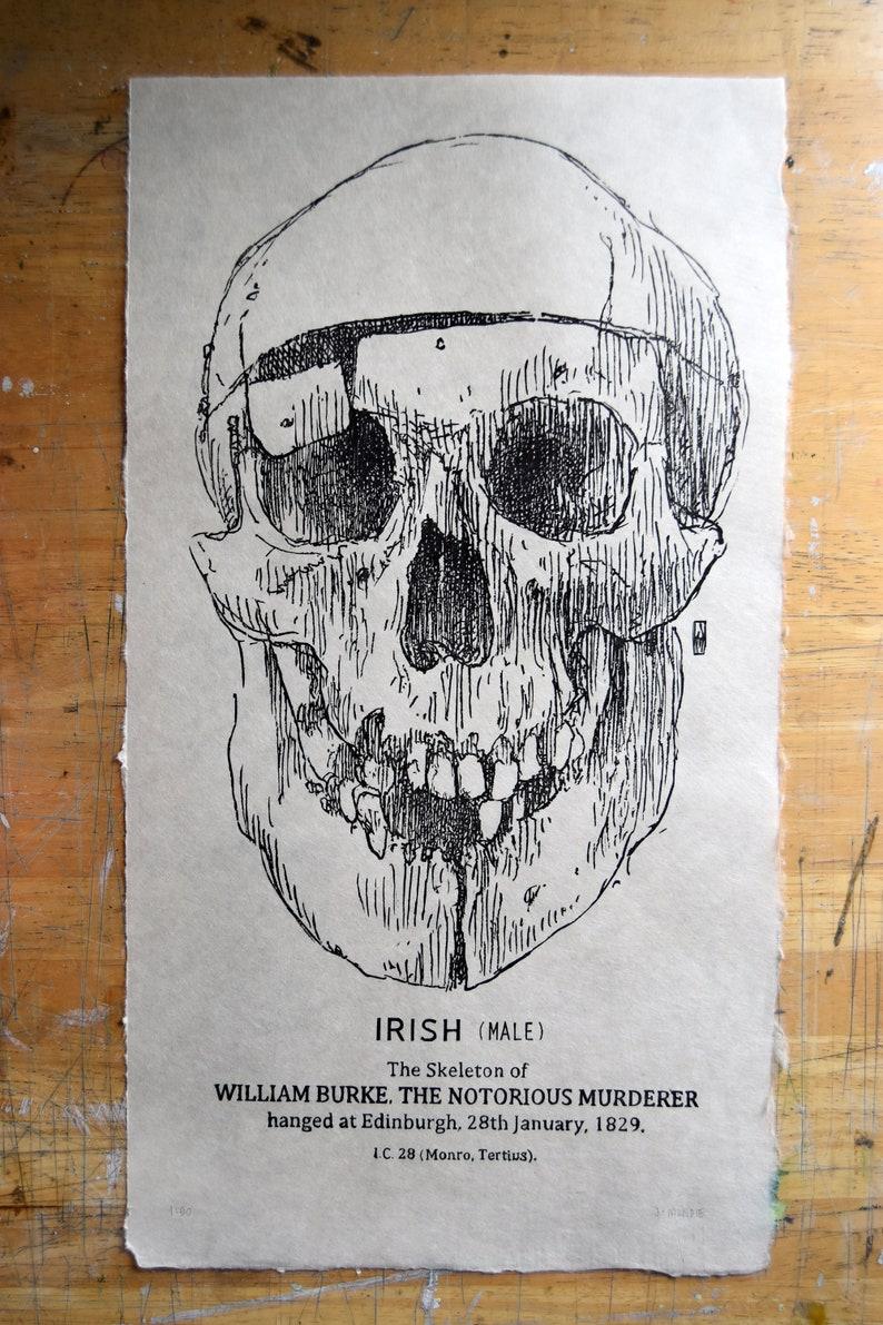 Woodcut print: William Burke the Notorious image 1