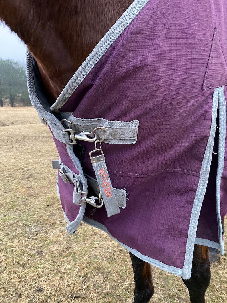 Horse blanket tags