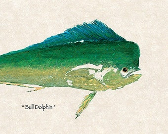 """New Life Size Limited Edition"""" Bull Dolphin """" gyotaku print"""