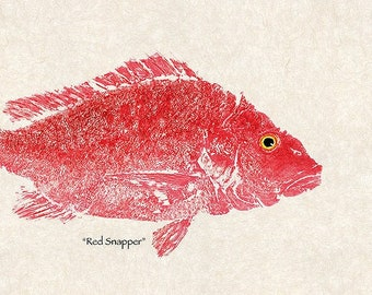 """Limited Edition Print  Large gyotaku """"Red Snapper"""""""
