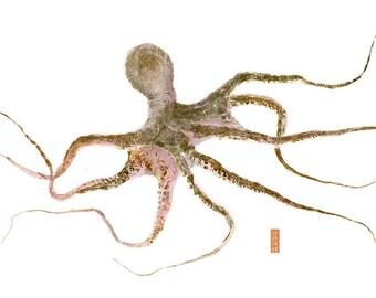 Limited Edtion Reprodution of gyotaku Octopus