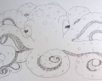 Adult coloring page-Octopus