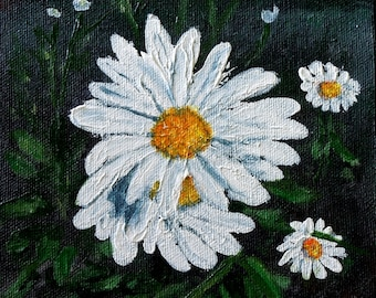 3685 - Daisy #1