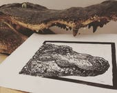 Alligator: Linocut origin...