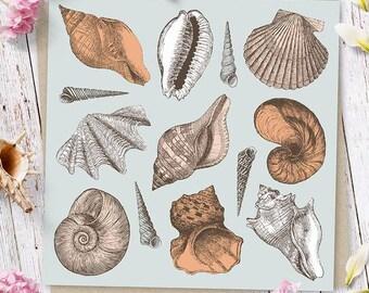 She Sells Seashells Greetings Card (Ships from Australia)
