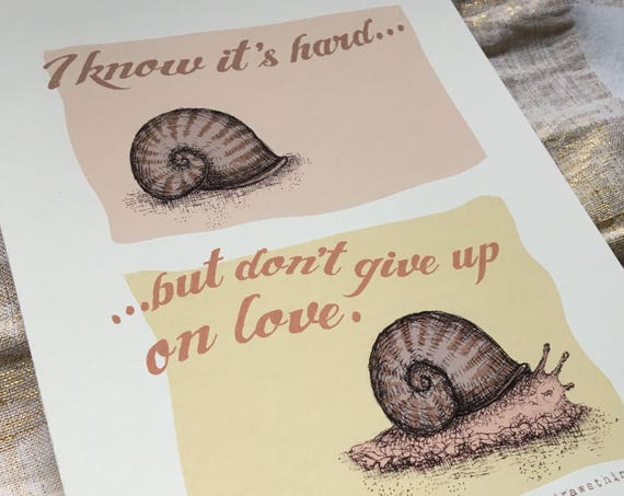 Dont give up on love - snail art print