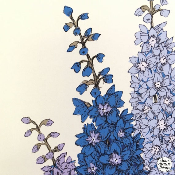 Delphinium art print for the Flower Power Fund