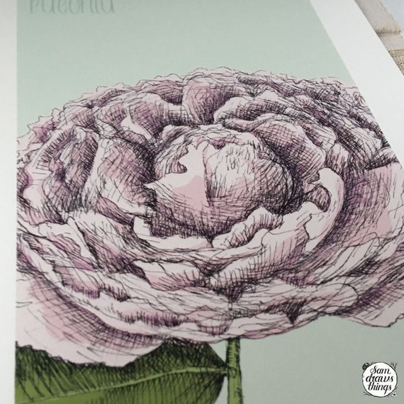 Peony art print for the Flower Power Fund