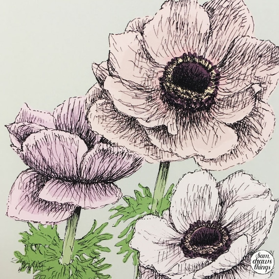 Anemone art print for the Flower Power Fund