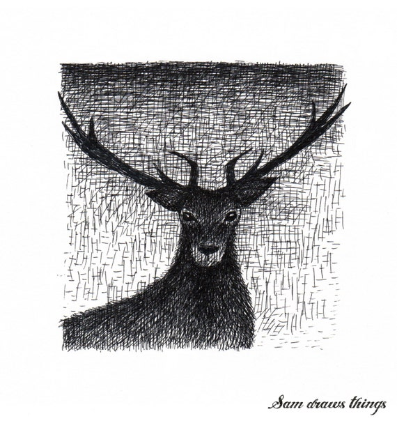 Stag in the Evening: Original illustration