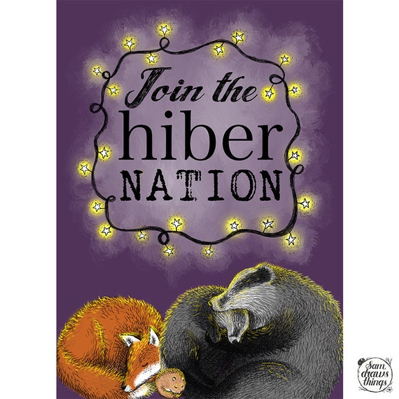 The hiberNATION hamper of cosy things - a gift box for creatures who don't like the cold