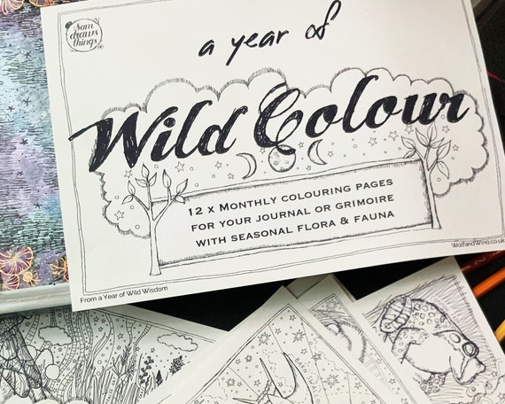 DOWLOAD: A Year of Wild Colour - colouring sheets for each month of the year