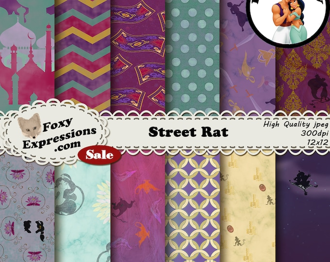 Street Rat inspired by Disneys Aladdin includes palace, magic carpet, aladdin, jasmine, genie, abu, whole new world, magic lamp and more