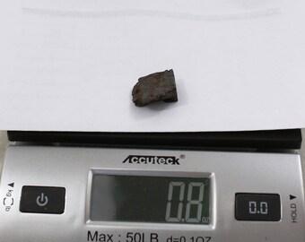 0.8oz CAMPO del CIELO Meteorite cut piece