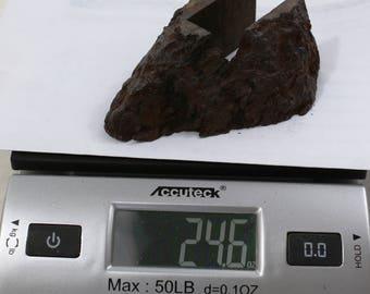 24.6oz CAMPO del CIELO Meteorite cut piece