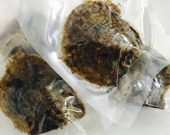 Add-on Akoya Oysters *not for individual sale* See description
