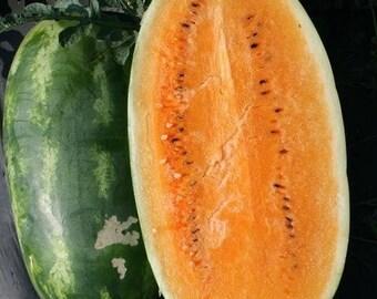 Tendersweet Orange Watermelon Heirloom Seeds