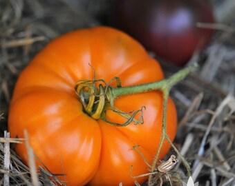 Amana Orange Tomato Heirloom Seeds