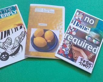Mini Zines: Pack of 3