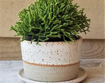 Handmade stoneware ceramic planter with saucer