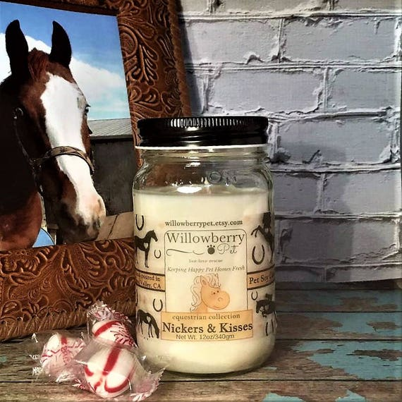 Horse Gifts Horse Gift Ideas Horse Gifts For Her Horse Candle Peppermint Candle Nicker Kisses Horse Gifts For Women Equine Candle