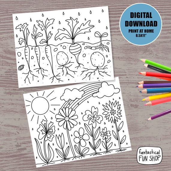 PRINTABLE spring coloring pages nature coloring for kids