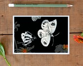 Postcard Butterflies of New Zealand, butterflies by night, illustrated butterfly postcard, wildlife drawing, summer gift, New German Shop