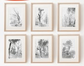 Set of 6 Tree Drawings, Fine Art Print, Tree Images, Nature Picture, Rustic Wall Decor, Pencil Illustration Forest, black and white, nordic