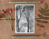 Tree Postcard, woodland postcard, tree picture, illustrated forest postcard, pencil graphic drawing, postcrossing, black and white, new