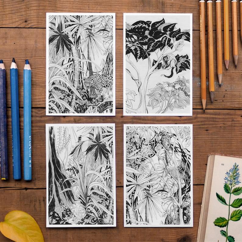 4 Jungle Postcards Set rainforest decor jungle tree picture No