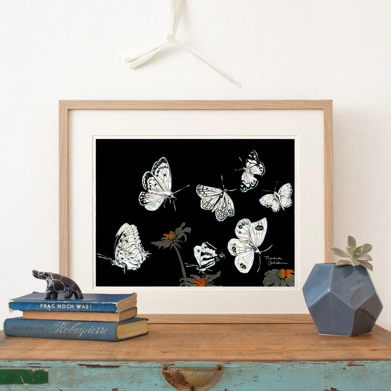 Butterflies Print Fine Art Print fine illustration NZ image 0