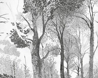 Baum Zeichnung, Wald-Kunstdruck, Illustration Wald, Waldbild, Baum Grafik, Bleistift Zeichnung schwarz und weiß Kunst, neuer Shop aus Berlin