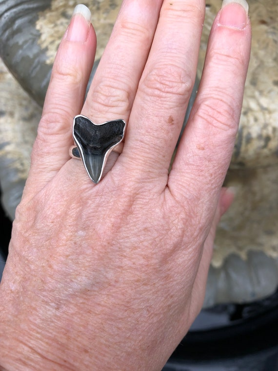 Shark tooth ring