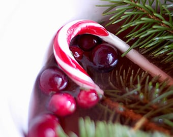 CRANBERRY PEPPERMINT Fragrance Oil for Candle, Potpourri & Soap Making - Choice of Bottle Sizes