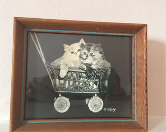 Vintage Bradley R. Currey kitten photograph with hand tinting 1940's signed