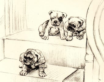 """1942 Vintage DOG PRINT from a book of Sketches by K.F. Barker """"The Pioneer"""""""