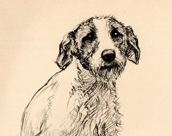 1938 Vintage DOG PRINT from a book of Sketches by K.F. Barker