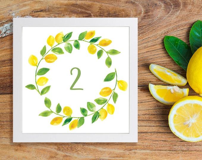 Lemon Table Numbers - Rustic Country Citrus Fruit - Printable Digital Files