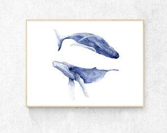 Dancing Whales Watercolour - A3 Premium Print
