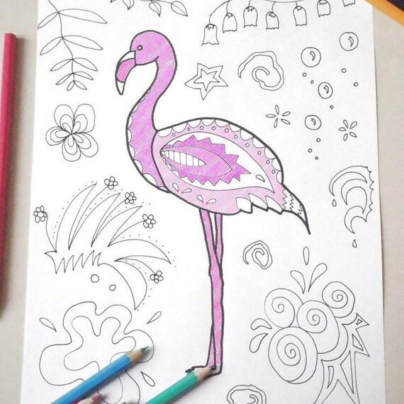 Fenicottero Disegno Colorare Adulti Bambini Tropicale Da Etsy