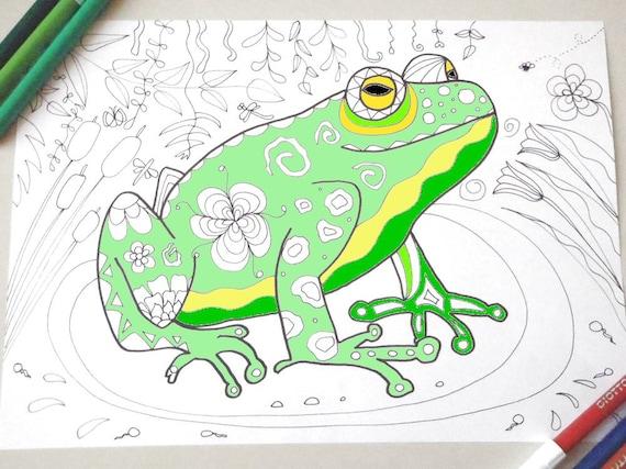 Rana Disegno Da Colorare Rospo Bambini E Adulti Animali Natura Etsy