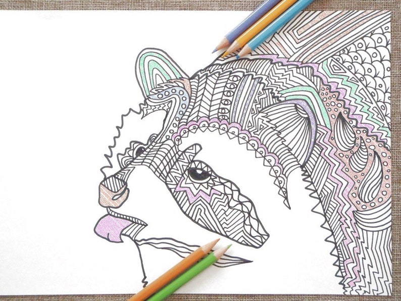 Raccoon animal coloring book adults colouring kids printable | Etsy