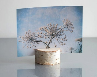 24 Photo Holders - Postcard Holder - Birch Branch Table Number Holders- Hygge Home Decor - Woodland Wedding Decor - Rustic Wedding Decor