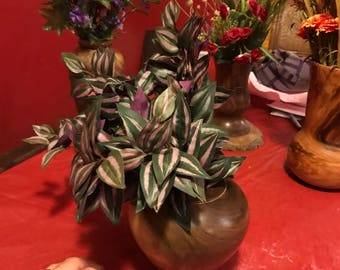 Hand made walnut vase