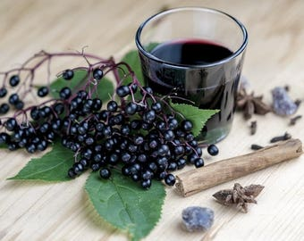 Elderberry Syrup -- Available Now!