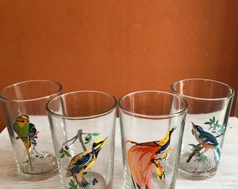 Vintage Bird species juice glasses