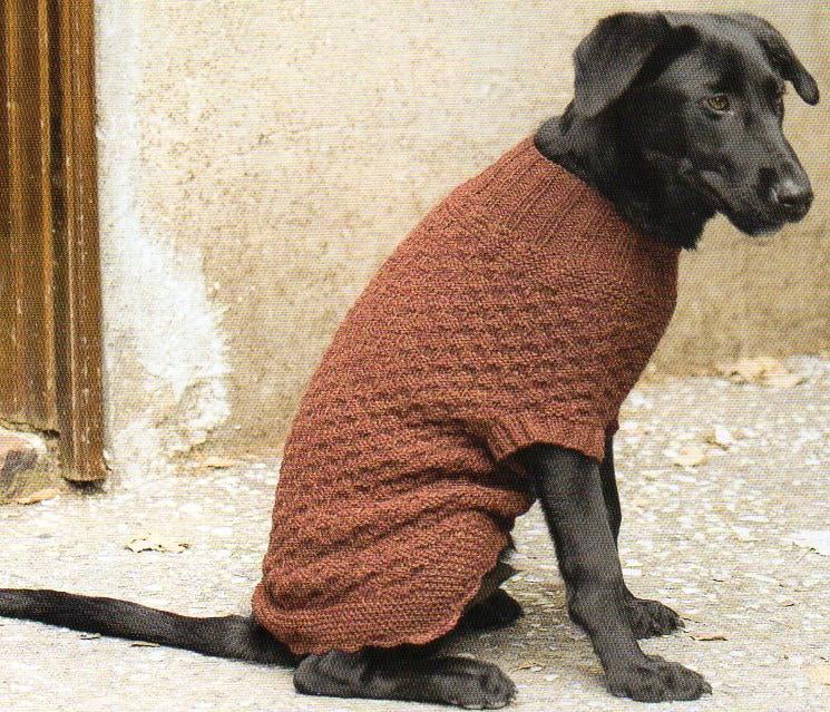 Dog Sweater Coat Knitting Pattern Knit Dog Sweater Coat | Etsy