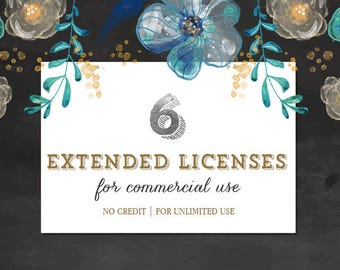 UPGRADE to 6 Extended Commercial Licenses Bundle for Commercial Use of Patterns, Graphic Design   Discount Package
