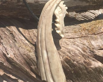 Game of Thrones Dragon Antler Necklace